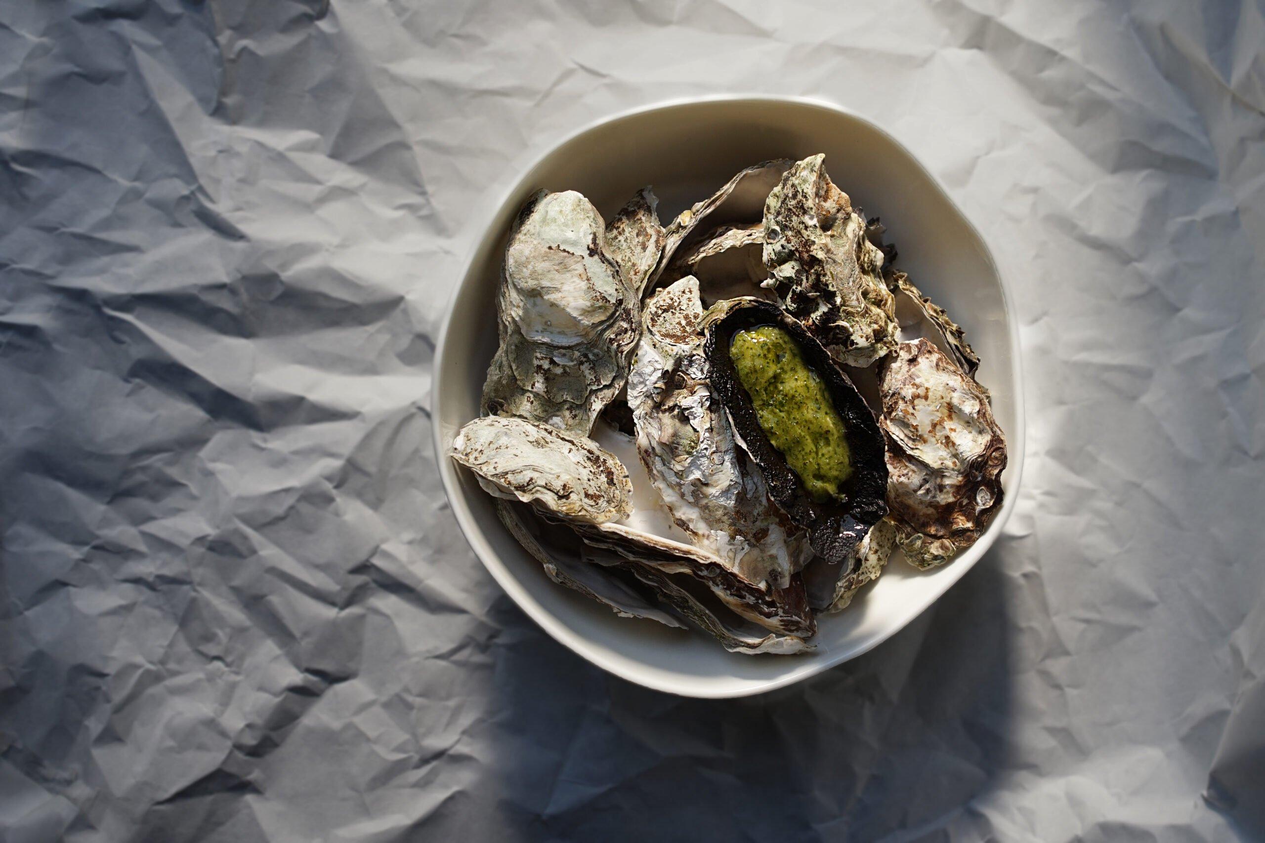 oyster kimi chimi